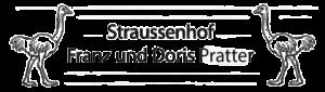 Logo Pratter