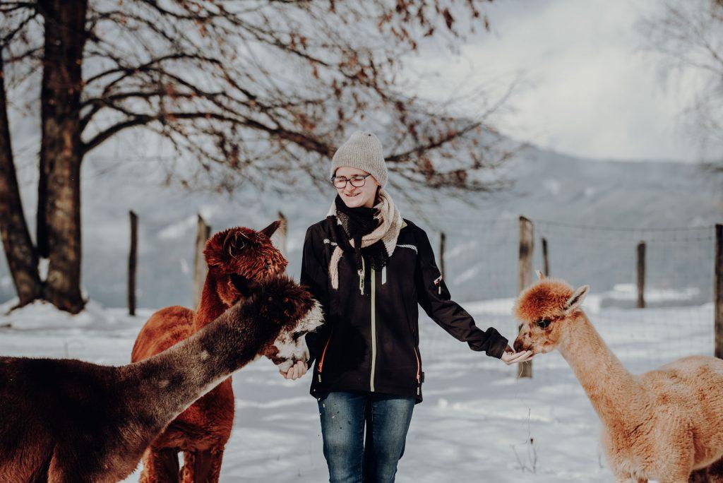 Alpaka Werkstatt – HerzBergLandAlpakas